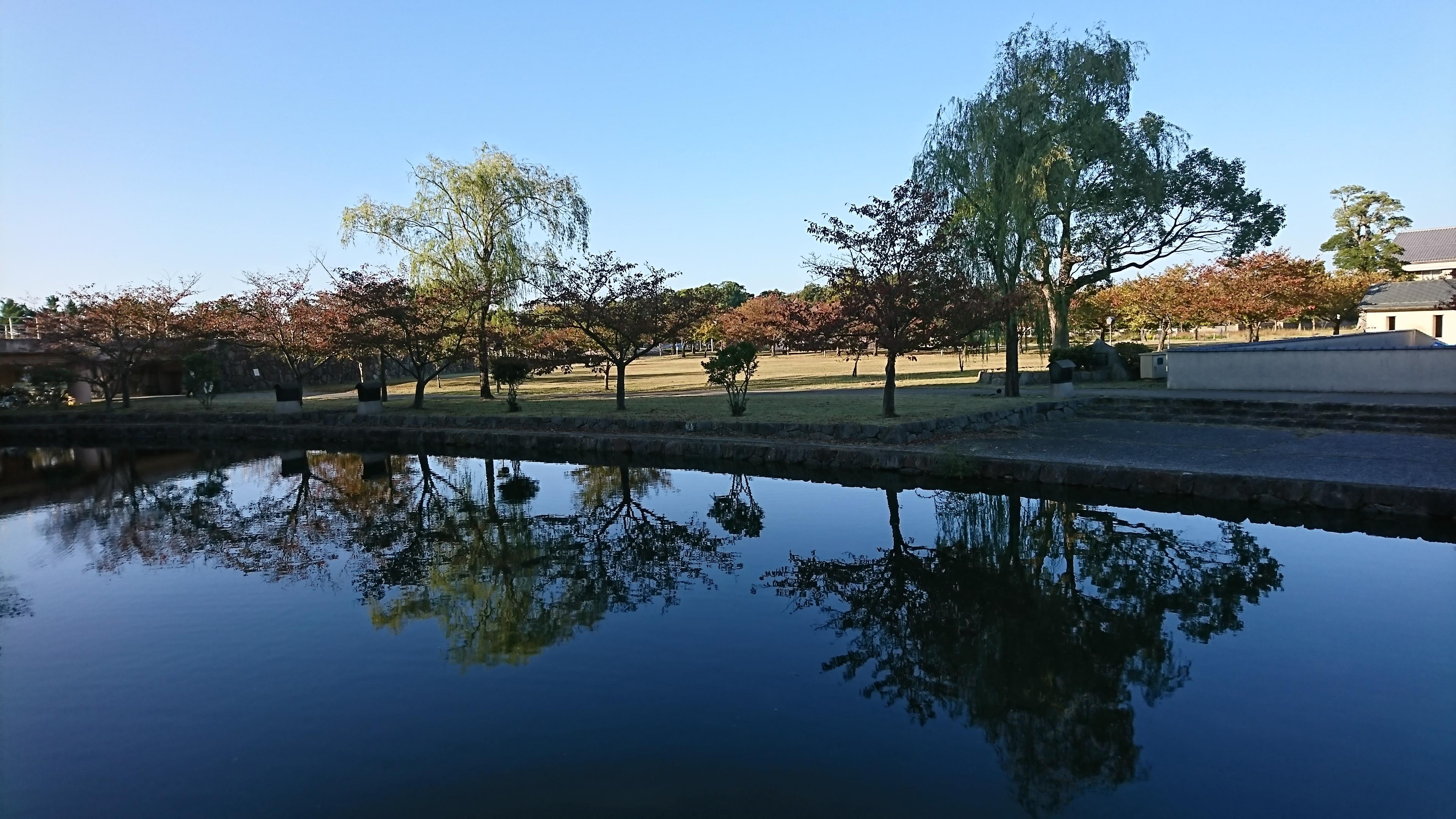 県大の秋1